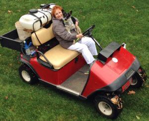 roo golf cart 1114