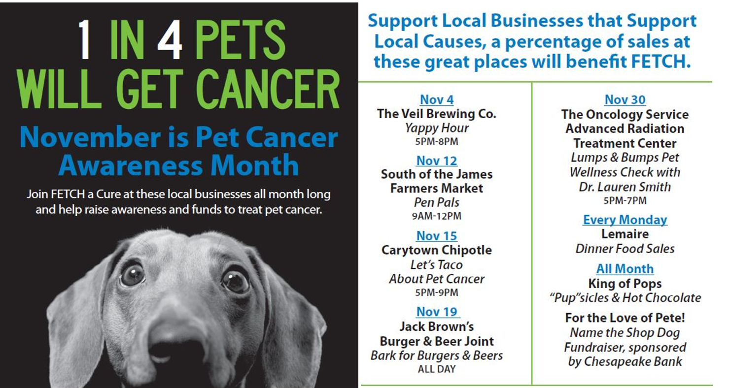 Pet Cancer Awareness and Help | FETCH a Cure