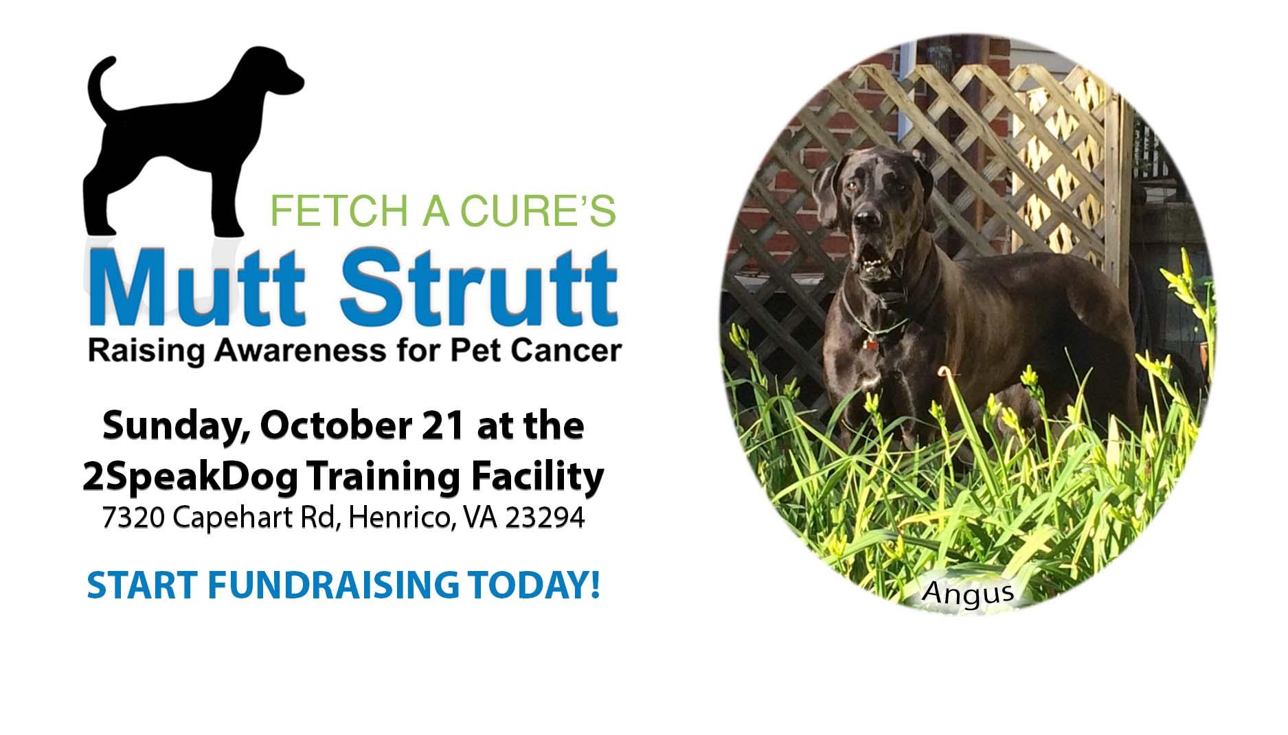 2018 Mutt Strutt Pet Cancer Awareness Walk