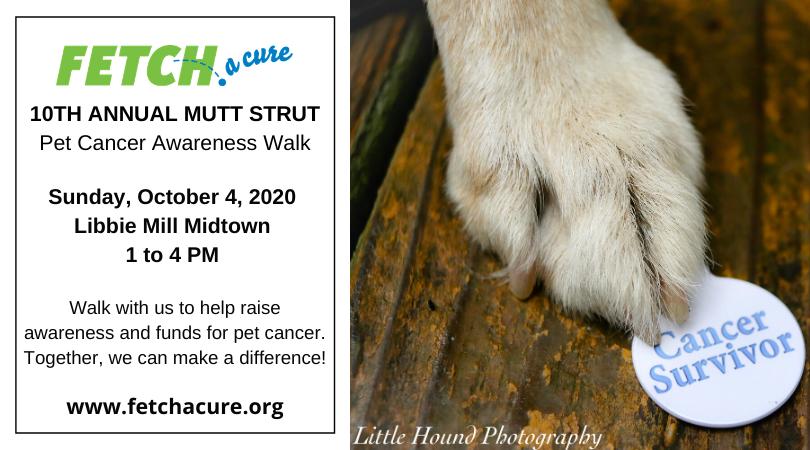 Mutt Strut 2020