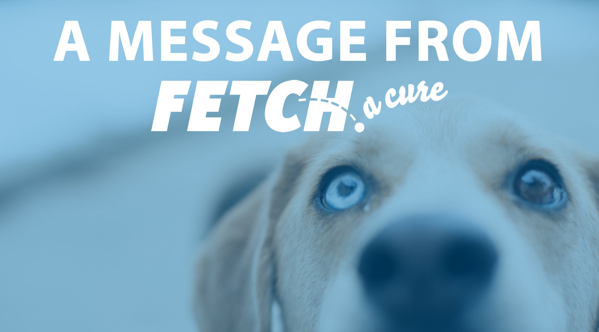 A Message from FETCH