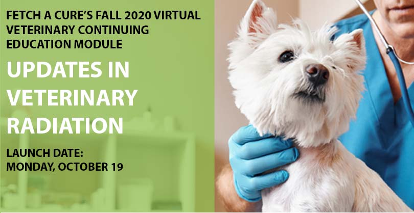 Fall 2020 Virtual CE Module
